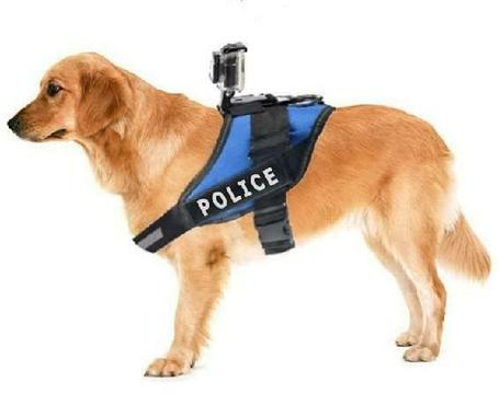 Fetch Hondenharnas / Houder / Riem voor GoPro